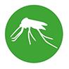 Buitenlandse muggen kunnen drager zijn van hartworm.