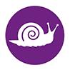 Franse hartworm, komt ook in Nederland voor.