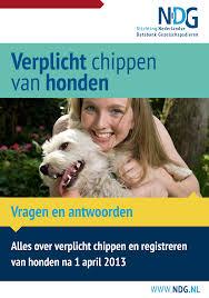 NDG: verplicht chippen en registreren van honden.
